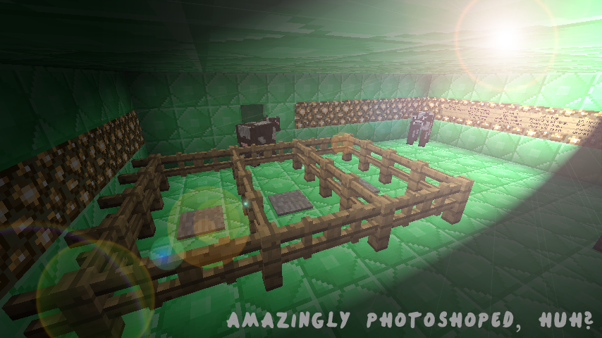 http://cdn.file-minecraft.com/Map/Emerald-Puzzle-Map-11.png