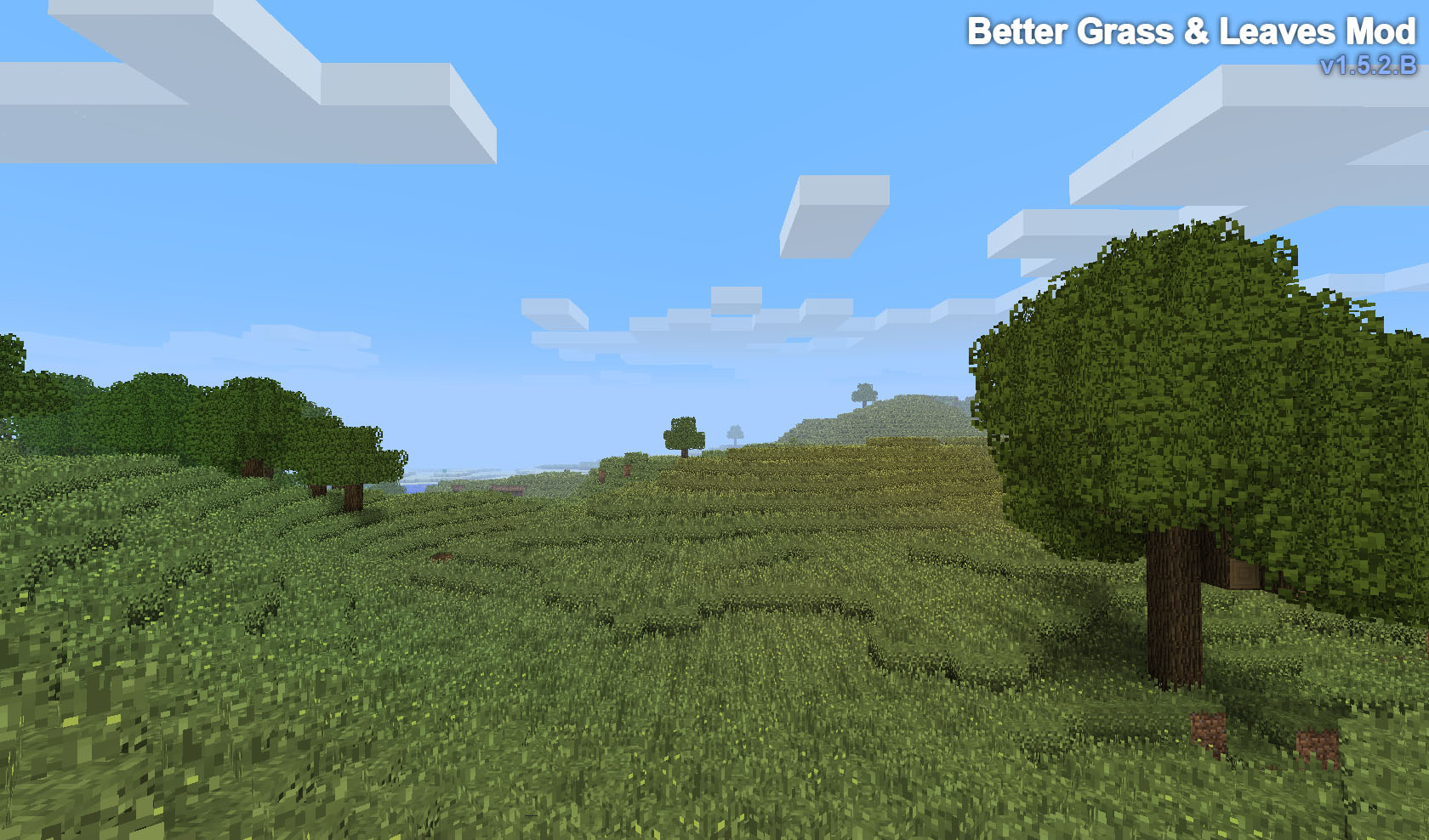 http://cdn.file-minecraft.com/Mods/Better-Grass-and-Leaves-Mod-1.jpg
