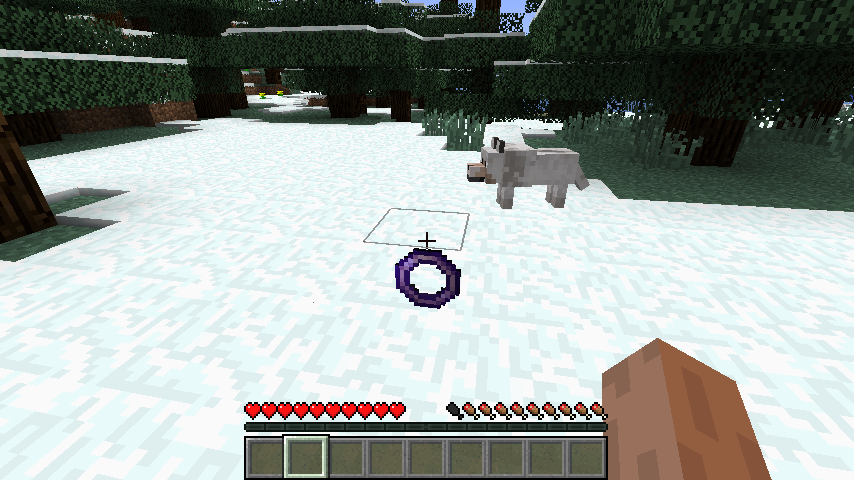 http://cdn.file-minecraft.com/Mods/Flying-Ring-Mod-1.png