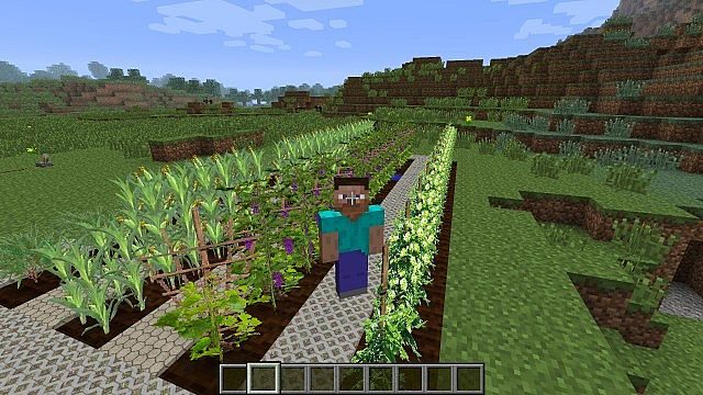 http://cdn.file-minecraft.com/Mods/Plants-and-Food-Mod-3.jpg